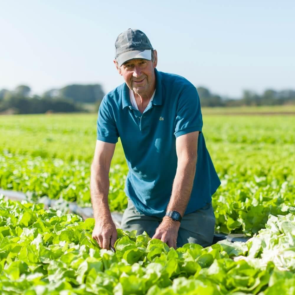 Producteur de sales locales et légumes locaux